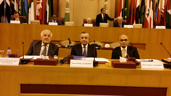Joint Meeting on the Rights of the Palestinian People in Cairo, Egypt